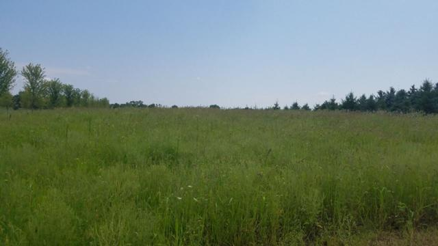 French Road, Seymour, WI 54165 (#50188720) :: Todd Wiese Homeselling System, Inc.