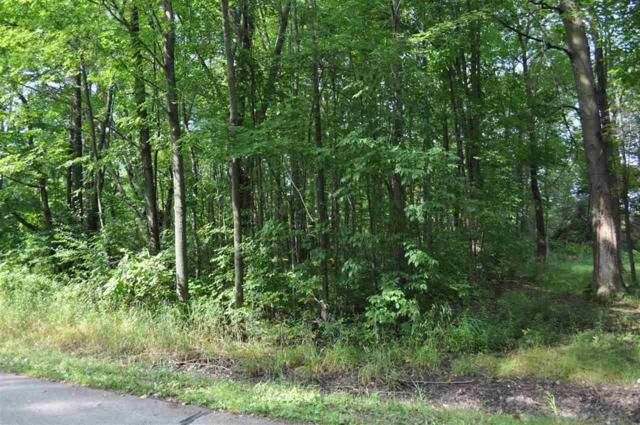 Moonlight Drive, Suamico, WI 54313 (#50191688) :: Symes Realty, LLC