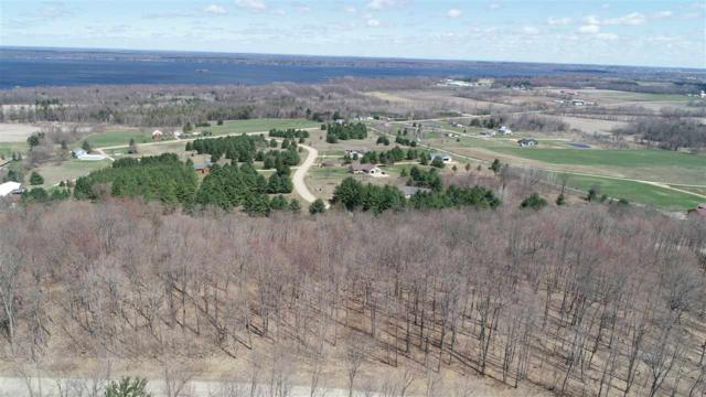 Oak View Drive, Shawano, WI 54166 (#50192052) :: Todd Wiese Homeselling System, Inc.