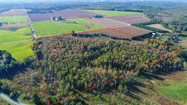 North Star Lane, Custer, WI 54423 (#50192215) :: Dallaire Realty