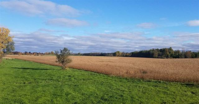 E Dunn Road, Sturgeon Bay, WI 54235 (#50193016) :: Symes Realty, LLC