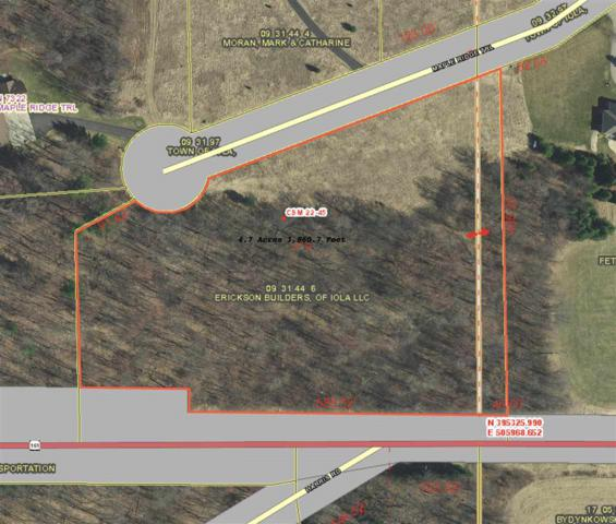 Maple Ridge Trail, Iola, WI 54945 (#50195478) :: Todd Wiese Homeselling System, Inc.