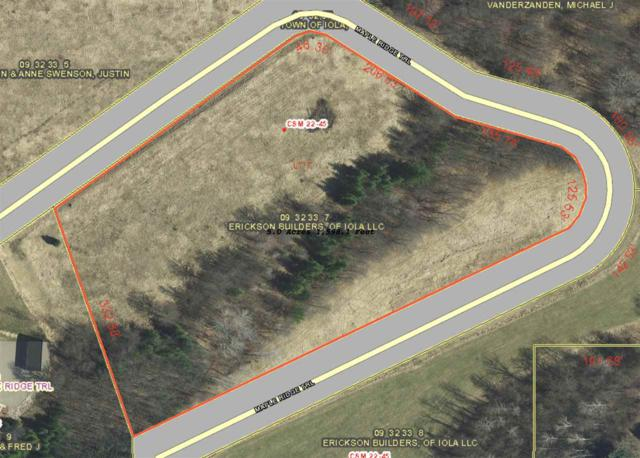 Maple Ridge Trail, Iola, WI 54945 (#50195479) :: Todd Wiese Homeselling System, Inc.