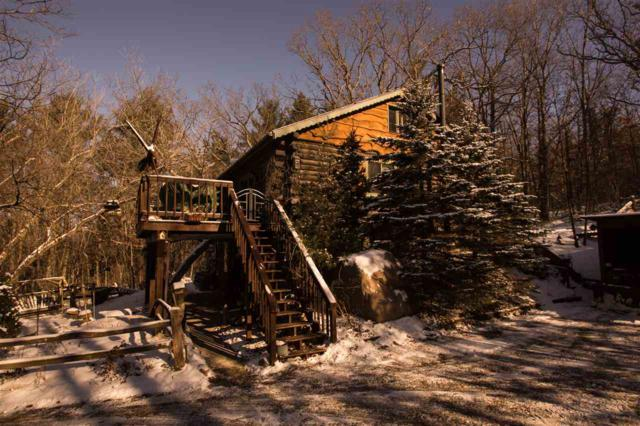 N3158 Mountain Shadow Lane, Wautoma, WI 54982 (#50196759) :: Dallaire Realty