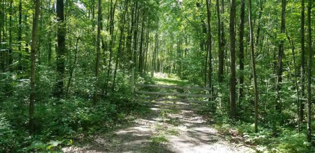 Cut Off Road, Ogdensburg, WI 54962 (#50197161) :: Symes Realty, LLC