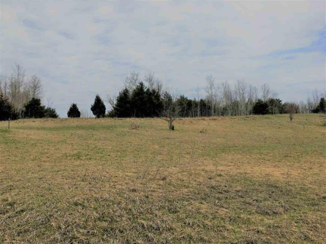 Bughs Lake Road, Wautoma, WI 54982 (#50197460) :: Dallaire Realty
