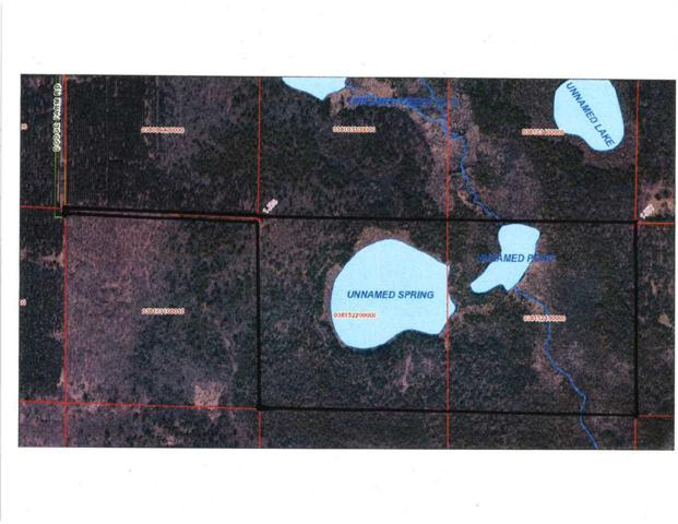 Dodge Farm Road, Gresham, WI 54128 (#50199226) :: Dallaire Realty