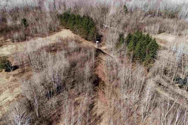 Hwy 32, Krakow, WI 54217 (#50199884) :: Dallaire Realty