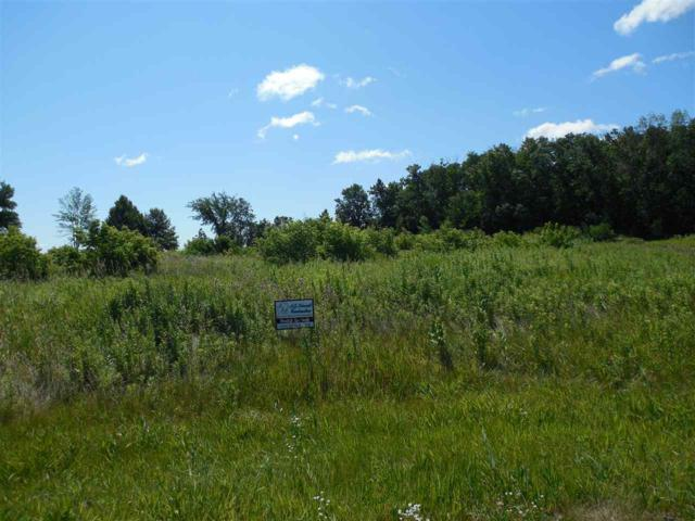 Lawler Court, Greenville, WI 54942 (#50199992) :: Todd Wiese Homeselling System, Inc.