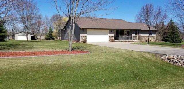 W9360 Oakwood Drive, Hortonville, WI 54944 (#50201330) :: Dallaire Realty