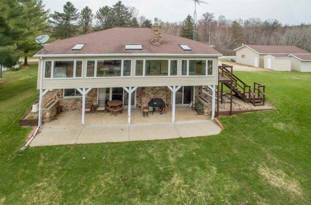 W7345 Pine View Drive, Wautoma, WI 54982 (#50201425) :: Todd Wiese Homeselling System, Inc.