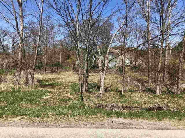 Nicolet Drive, Green Bay, WI 54311 (#50202258) :: Dallaire Realty