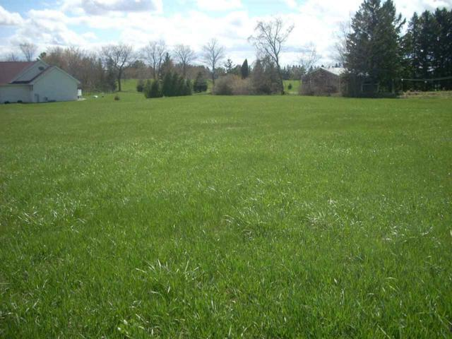 Old Orchard Avenue, Casco, WI 54205 (#50203301) :: Todd Wiese Homeselling System, Inc.