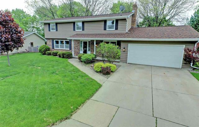 1009 E Florida Avenue, Appleton, WI 54911 (#50203833) :: Todd Wiese Homeselling System, Inc.