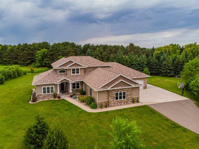 142 Crystal Springs Drive, Hortonville, WI 54944 (#50204667) :: Dallaire Realty