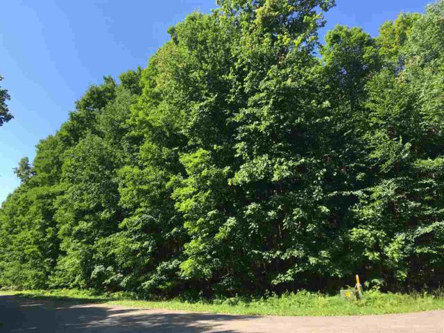 Cougar Lane, Townsend, WI 54175 (#50206147) :: Dallaire Realty