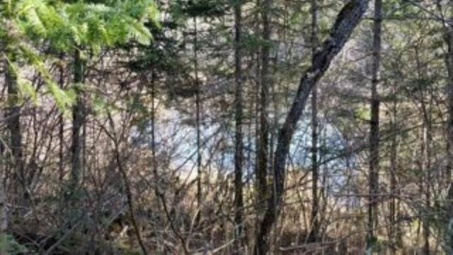 River Ridge Road, Wabeno, WI 54566 (#50209909) :: Todd Wiese Homeselling System, Inc.