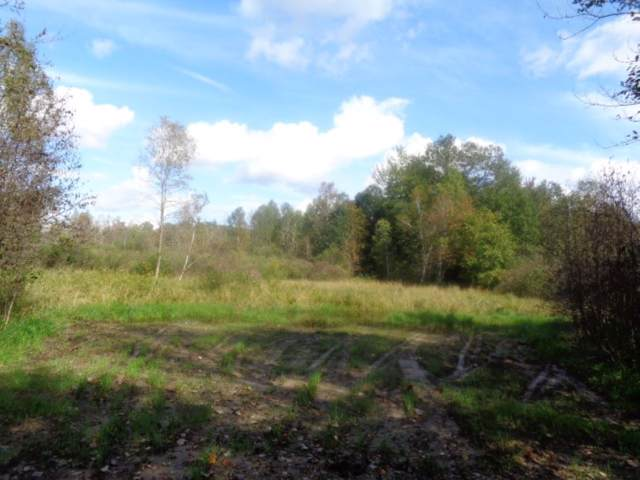 Hwy E, Abrams, WI 54101 (#50211450) :: Todd Wiese Homeselling System, Inc.