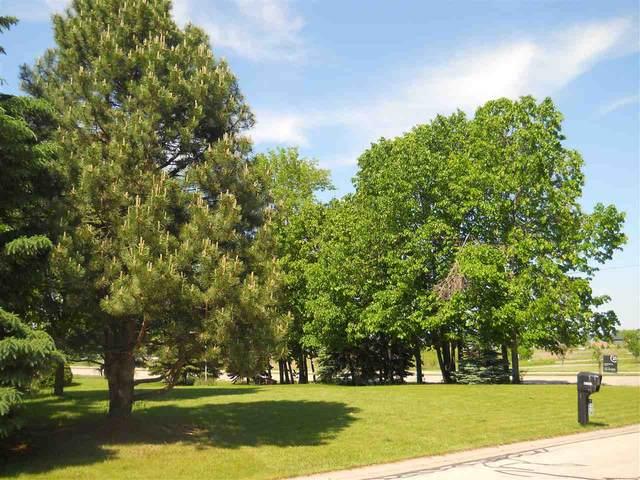 W5906 Blazing Star Drive, Appleton, WI 54915 (#50216921) :: Todd Wiese Homeselling System, Inc.