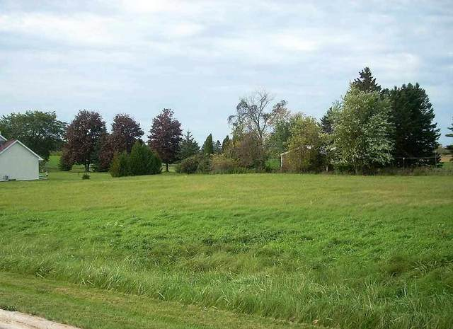 Old Orchard Avenue, Casco, WI 54205 (#50217146) :: Todd Wiese Homeselling System, Inc.
