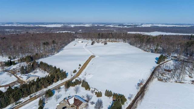 Quintessence Court, New London, WI 54961 (#50217894) :: Todd Wiese Homeselling System, Inc.