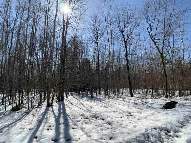 Lime Ridge Road, Shawano, WI 54166 (#50218074) :: Todd Wiese Homeselling System, Inc.