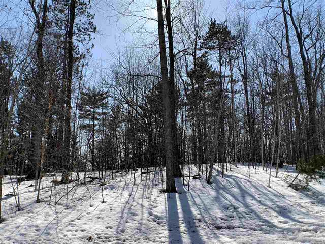 Oak View Drive, Shawano, WI 54166 (#50218168) :: Todd Wiese Homeselling System, Inc.
