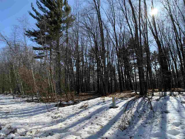 Oak View Drive, Shawano, WI 54166 (#50218169) :: Todd Wiese Homeselling System, Inc.