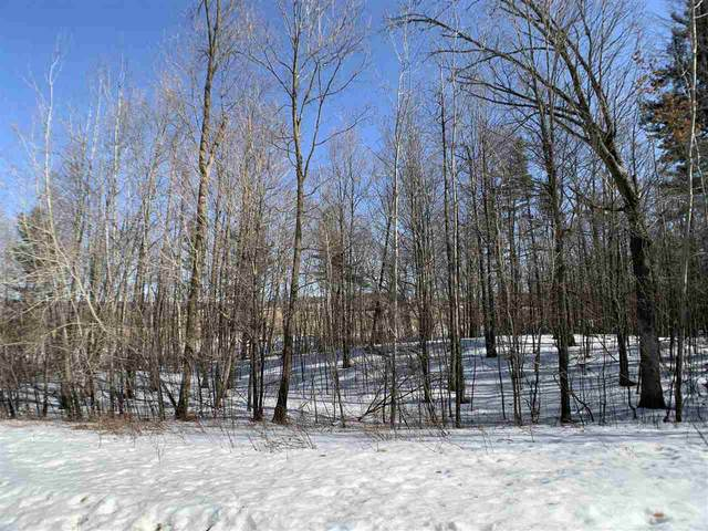 Oak View Drive, Shawano, WI 54166 (#50218171) :: Todd Wiese Homeselling System, Inc.