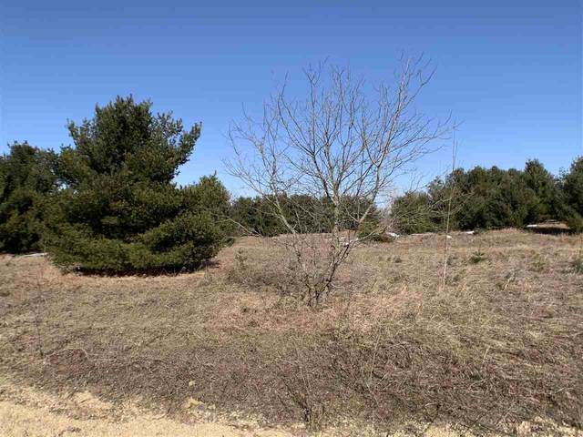 Oak View Drive, Shawano, WI 54166 (#50218222) :: Todd Wiese Homeselling System, Inc.