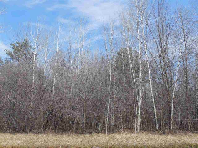 Pine Avenue, Oconto, WI 54153 (#50218510) :: Dallaire Realty