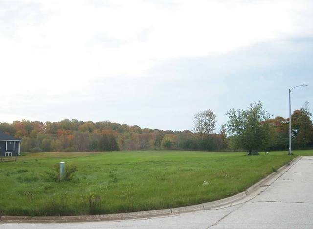 1ST Street, Casco, WI 54205 (#50218519) :: Todd Wiese Homeselling System, Inc.