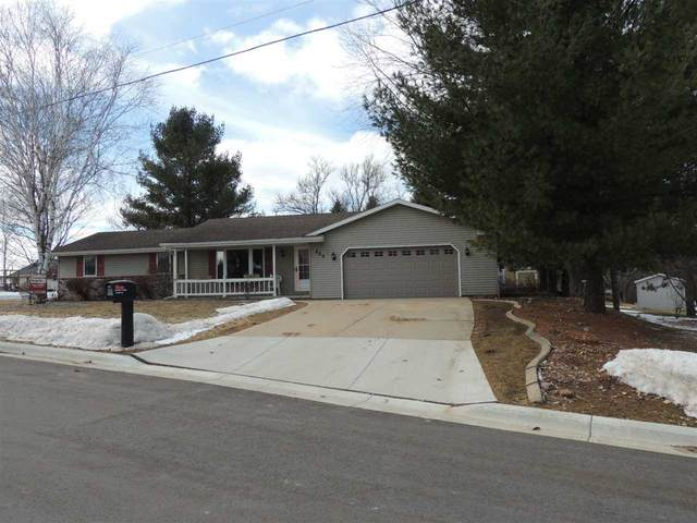 205 S Birch Avenue, Gillett, WI 54124 (#50218566) :: Todd Wiese Homeselling System, Inc.