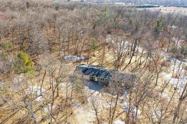 N6294 S Long Lake Road, Wild Rose, WI 54984 (#50219255) :: Todd Wiese Homeselling System, Inc.
