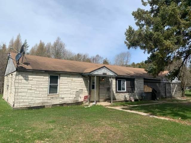 N16185 Birch Street, SPALDING, MI 49886 (#50219319) :: Todd Wiese Homeselling System, Inc.