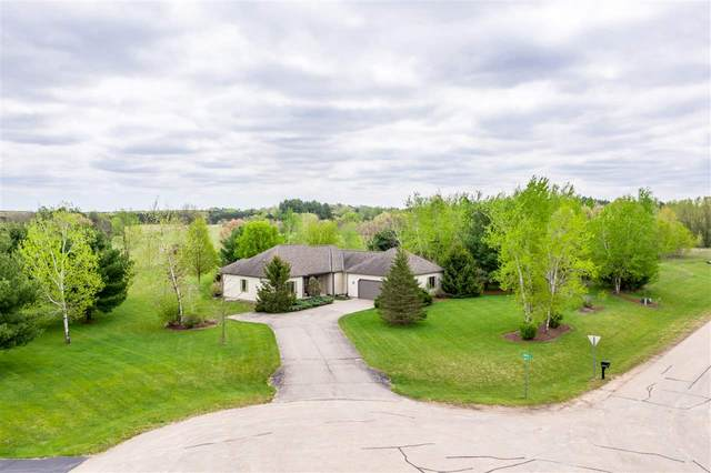 223 N Mossy Oak Court, Wautoma, WI 54982 (#50222179) :: Todd Wiese Homeselling System, Inc.