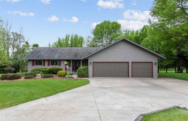 W3539 Joanne Court, Appleton, WI 54913 (#50222973) :: Ben Bartolazzi Real Estate Inc