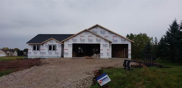 N6009 Meadowview Lane, Fond Du Lac, WI 54937 (#50229291) :: Carolyn Stark Real Estate Team