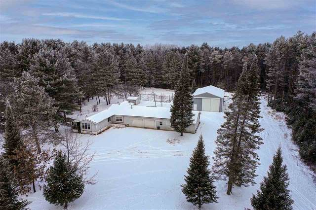 N1841 William Drive, Waupaca, WI 54981 (#50232207) :: Todd Wiese Homeselling System, Inc.