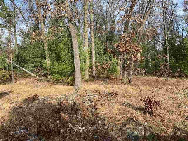 Pioneer Drive, Shawano, WI 54166 (#50232279) :: Ben Bartolazzi Real Estate Inc