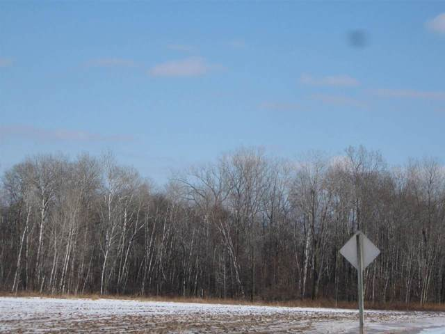 Swamp Road, Brussels, WI 54204 (#50232903) :: Town & Country Real Estate