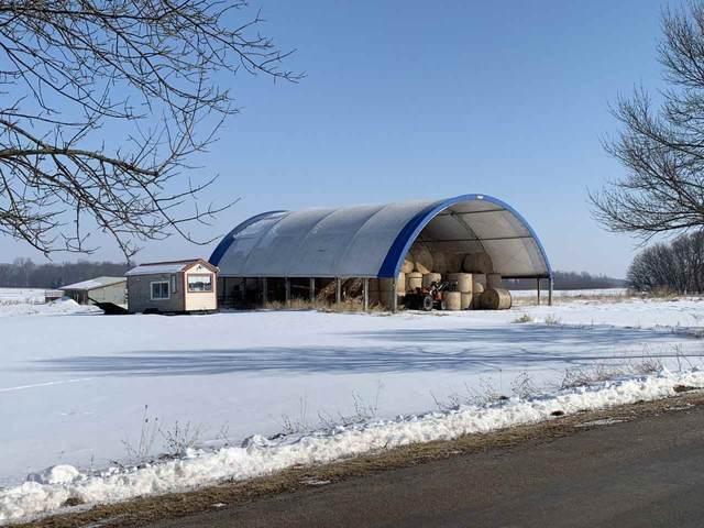 7668 Oak Hill Road, Omro, WI 54963 (#50234073) :: Town & Country Real Estate