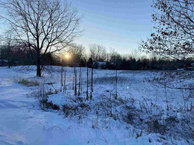 Eagle Drive, Sobieski, WI 54171 (#50235642) :: Dallaire Realty