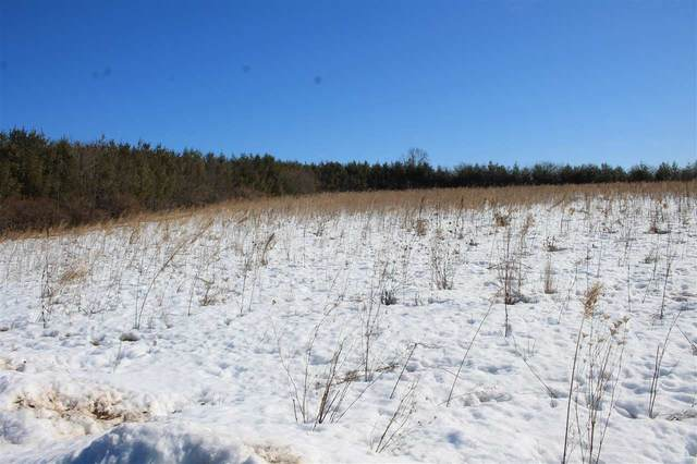 Hwy F, Cascade, WI 53011 (#50236128) :: Town & Country Real Estate