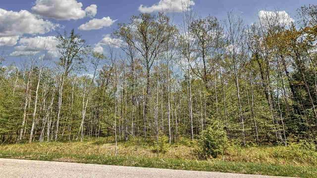 Mac Bailey Road, Oconto Falls, WI 54154 (#50236328) :: Carolyn Stark Real Estate Team