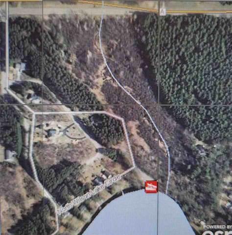 N Wilson Lake Circle, Wild Rose, WI 54984 (#50238088) :: Symes Realty, LLC