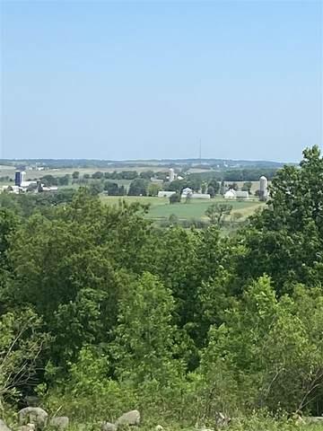 Buena Vista Drive, Fond Du Lac, WI 54937 (#50241363) :: Carolyn Stark Real Estate Team