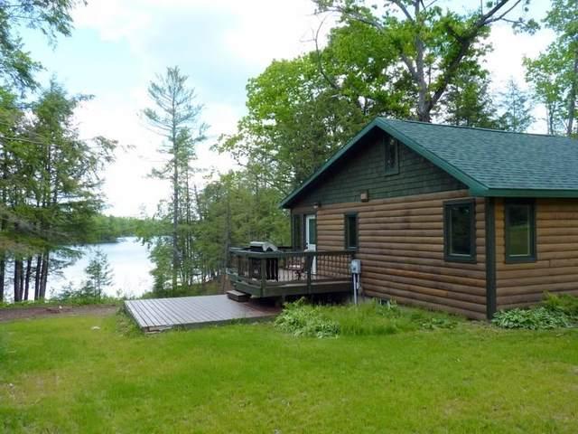 15003 Shadow Lake Lane, Mountain, WI 54149 (#50241502) :: Dallaire Realty
