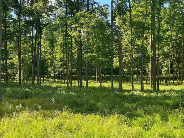 E Campfire Road, Leopolis, WI 54948 (#50243131) :: Todd Wiese Homeselling System, Inc.