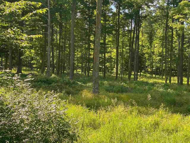 E Campfire Road, Leopolis, WI 54948 (#50243137) :: Symes Realty, LLC